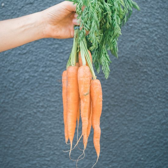 Baby is the length of a carrot by week 21