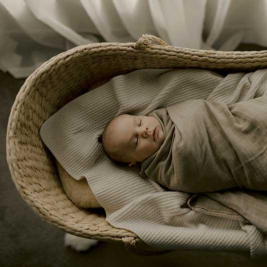 Newborn baby sleeps in Moses basket